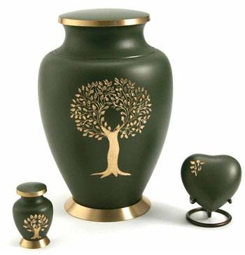 Urn - Golden Tree Green Cypress